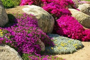 2020 River Rock Prices Landscaping