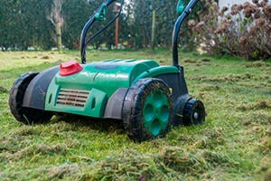 Aerate a Lawn in Donald