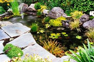 2017 Pond Installation Costs Price To Add A Pond