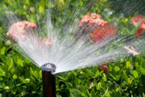 Local Sprinkler Companies