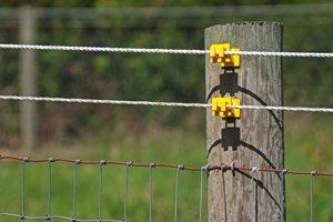 Install Electronic Pet Fence