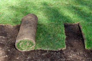 Install Synthetic Grass for Landscaping, Putting Greens, Play Areas, etc. in Maricopa