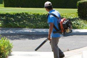 Fall / Spring Yard Clean Up in San Diego