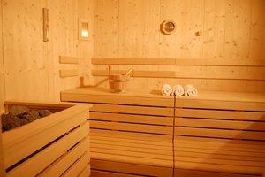 Repair a Sauna in Denver