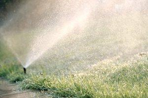 Service a Lawn and Garden Sprinkler System in Saint Paul