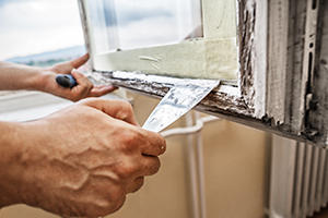 Average window replacement costs