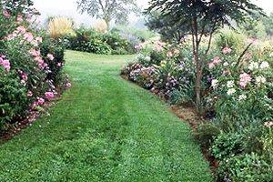 Grade or Reslope Grounds for Landscaping in Kansas City
