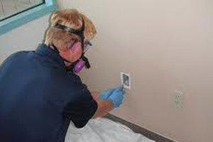 Test or Evaluate Asbestos Risks in Mesa