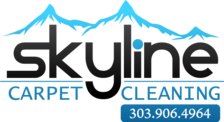 Skyline Carpet Cleaning Services, LLC