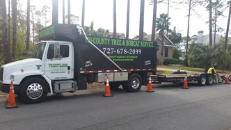 Tri County Tree Amp Bobcat Services Inc Clearwater Fl