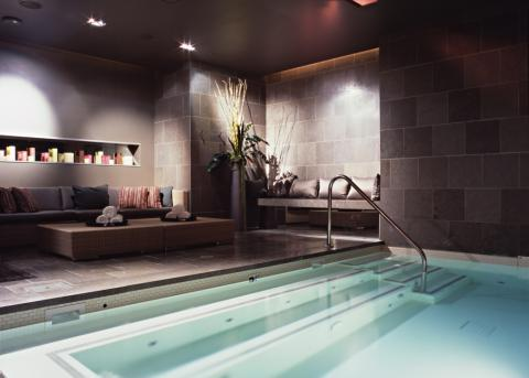 Contemporary basement ideas designs pictures for Basement swimming pool ideas