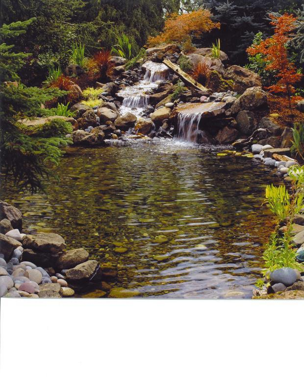 Garden garden in forest grove landscape waterfall by for Forest grove plumbing