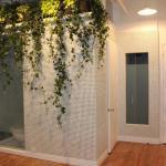 Mid-Century Modern Entry with ivy hanging in bathroom