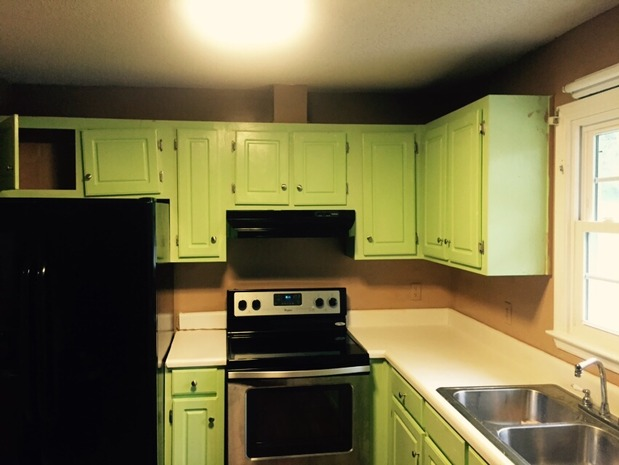 Vintage Kitchen In Greenville Silver Stainless Steel Drop In Sink Green Pine Raised Panel