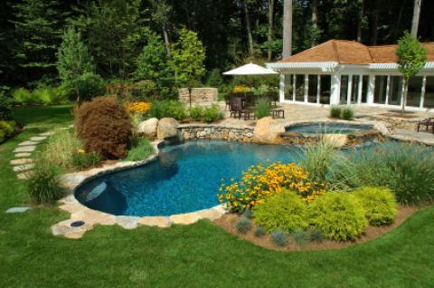 Transitional Pool with pool with plants and stone surround