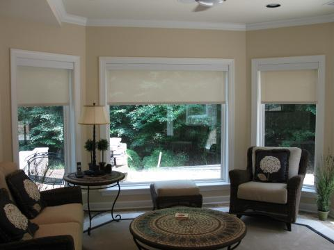 Transitional Sunroom with black metal base bed side reading lamp