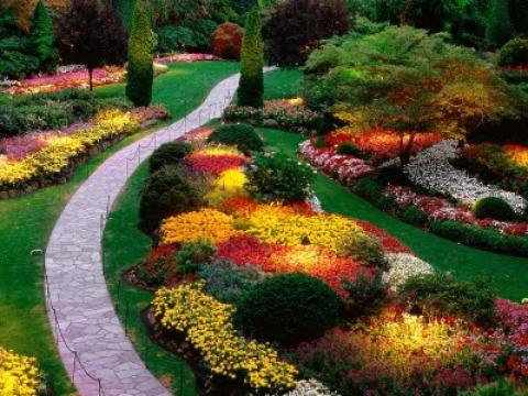 Garden Landscape with path through flower garden