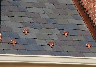 Davinci slate 1 pictures and photos for Davinci slate roof reviews