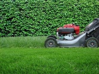 Penalozau0027s Gardening Service