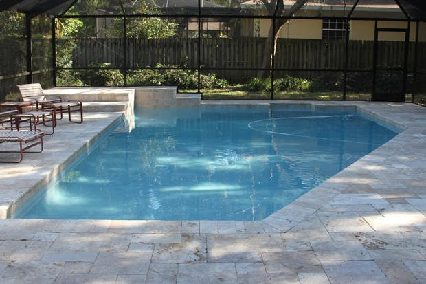 Transitional pool in tampa outdoor chaise lounge pool for Pool design tampa
