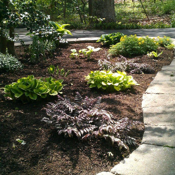 Photo Courtesy OfSenn Lawn Care, LLC In Chalfont, PA