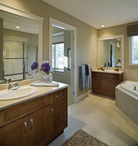 Transitional Master Bathroom with wood framed vanity mirror