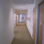 Contemporary Hallway with carpeted hallway