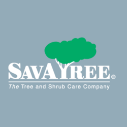 Savatree Warrenville Warrenville Il 60555 Homeadvisor