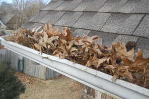 Local Home Gutter Cleaning Services
