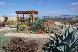 Local Zeroscaping Companies and Desertscape Contractors