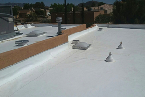 Local Flat Roof Repairmen