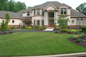 Local Professional Grass Seeding Companies