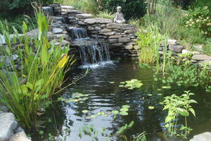 Local Pond Installation Companies