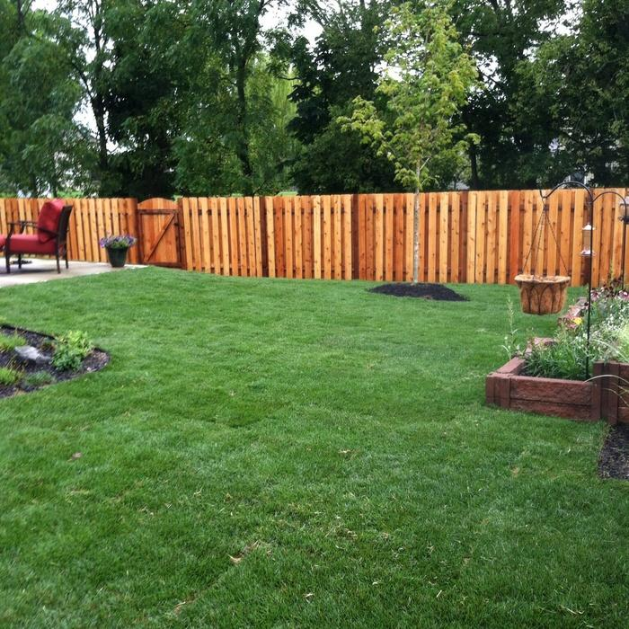 Backyard ideas for dog owners the image for Large lot landscaping ideas