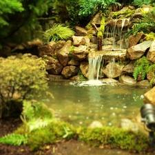 Affordable Ponds Llc Vancouver Wa 98663 Homeadvisor