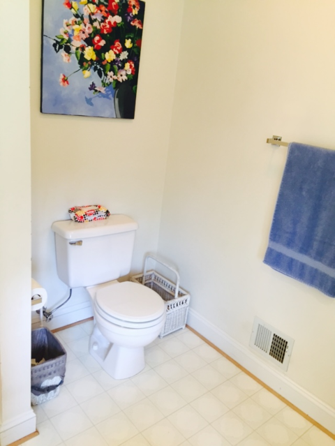 Casual / Comfortable Bathroom with thick white baseboards