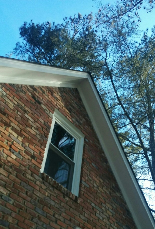 Transitional home exterior in greenville vinyl clad for Vinyl clad windows