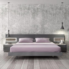 Contemporary Bedroom with grey concrete painted finish on wall