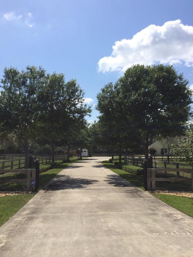 Landscape in jupiter poured concrete driveway fence for Pouring concrete driveway