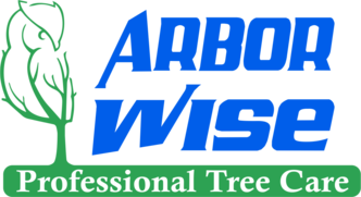 Arbor Wise Professional Tree Care St Petersburg Fl