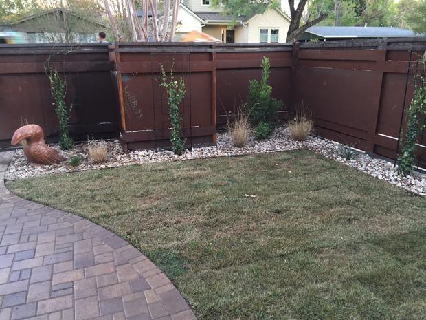 Eclectic landscape in austin sod lawn wood panel for Home turf texas landscape design llc