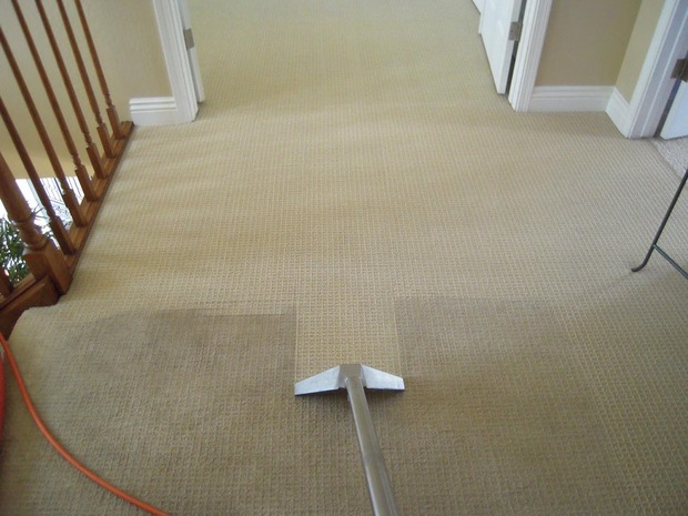 Average price of carpet installed