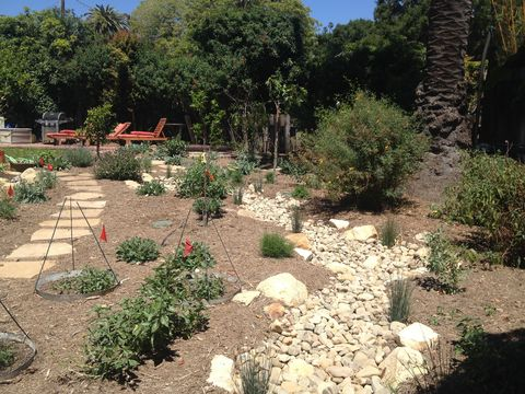 Eclectic Landscape with dry creek bed to distribute rain water