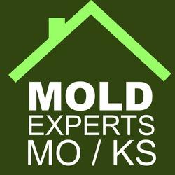 Mold Experts Of Missouri Amp Kansas Lee S Summit Mo 64063