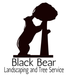 big bear city black dating site Search big bear city, ca real estate for sale view property details of the 521 homes for sale in big bear city at a median listing price of $285,000.