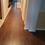 Contemporary Hallway with stained wood floor