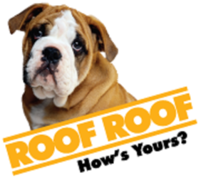 Roofroof Raleigh Raleigh Nc 27617 Homeadvisor