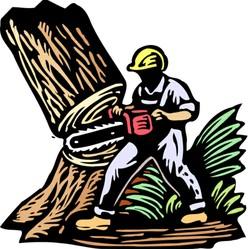 Timbers Tree Service Dayton Tn 37321 Homeadvisor