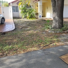 landscaping company miami sod installation absolute landscaping service inc miami fl 33165 homeadvisor