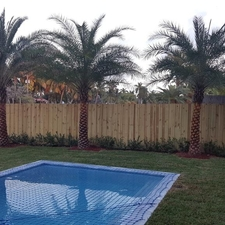 landscaping company miami landscaping maintena absolute service inc miami fl 33165 homeadvisor